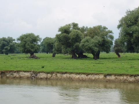 naturaleza-serbia.jpg